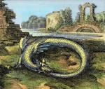 Atalante, 1618, Ouroboros (dragon se mordant la queue)