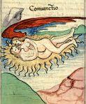 Rosarium philosophorum, 1529, Coiunctio